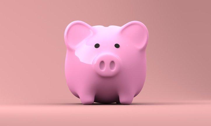 piggy-bank-2889042_1280(11)