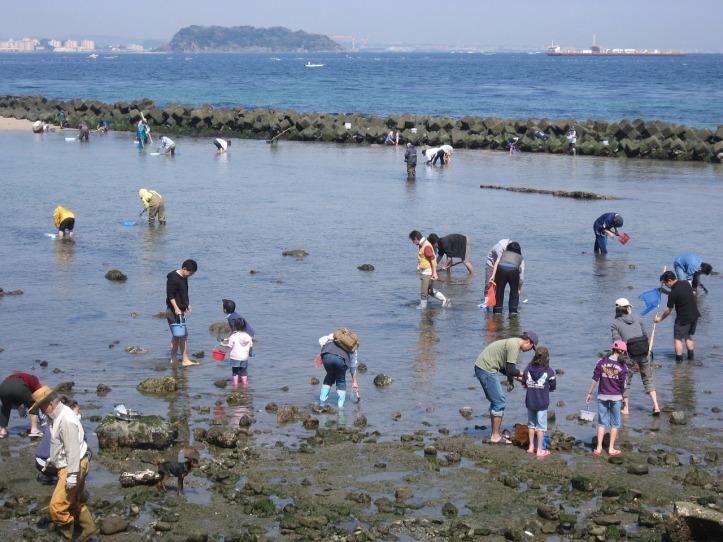 hashirimizu-beach-1308032_1280